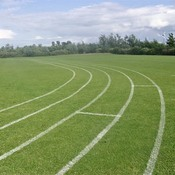 Schools sports field line marking at school grounds by Marcus Young Landscapes Ltd