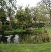 Hanslope Village pond maintenance by Marcus Young Landscapes Ltd